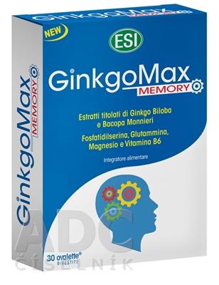 ESI GinkoMax Memory Mg+B6