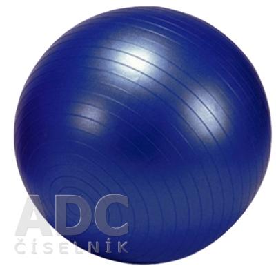GYMY OVER BALL REHABILITAČNÁ LOPTA 25 cm